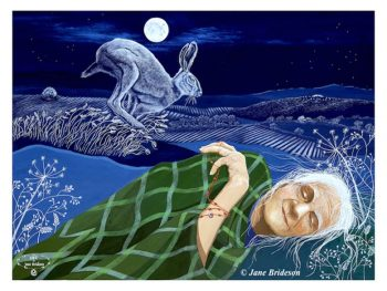 Tales from the Cailleach: Into the Hare